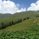 Tropa-Phija-Arhyz